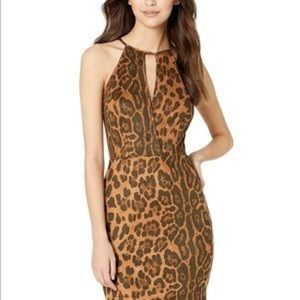 Bebe Cheetah Faux Suede Leopard Mini Dress 12